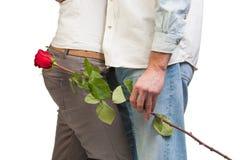 Молодые пары с подняли Стоковое Изображение RF