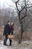 Молодые пары с корзиной в парке зимы Стоковая Фотография