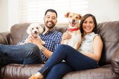 Молодые пары с 2 собаками дома Стоковые Фотографии RF