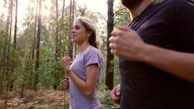 Молодые пары jogging на вымощенной дороге в природе акции видеоматериалы