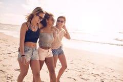 Молодые друзья идя вдоль пляжа во время летнего времени Стоковая Фотография RF