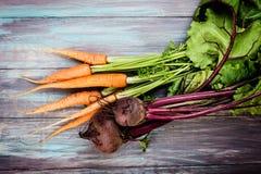Молодые свеклы и моркови Стоковая Фотография