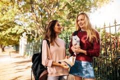Молодые студентки с книгами говоря на дороге Стоковая Фотография RF