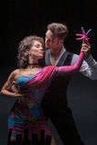 Молодые танцы пар Стоковое Фото