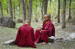 Молодые тибетские монахи стоковое фото rf