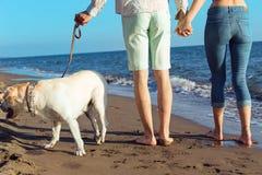 2 молодые люди бежать на пляже целуя и держа туго с собакой Стоковые Изображения