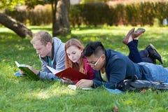 Молодые люди изучая в парке Стоковые Изображения RF