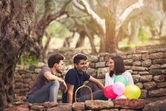 3 молодые люди на пикнике сидя на одеяле под оливкой Стоковые Фото