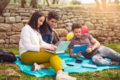 3 молодые люди на пикнике сидя на одеяле под оливкой Стоковое Изображение