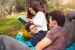 3 молодые люди на пикнике сидя на одеяле под оливкой Стоковое фото RF