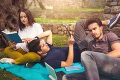 3 молодые люди на пикнике сидя на одеяле под оливкой Стоковые Фотографии RF