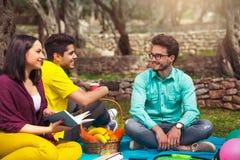 3 молодые люди на picnicunder оливковые дерева Стоковая Фотография RF