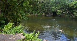 Молодые люди плавает в валунах Babinda в Квинсленде Австралии стоковая фотография rf
