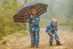 2 молодых брать играя в парке осени Стоковые Изображения RF