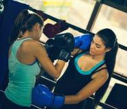 2 молодых женских боксера на тренировке Стоковая Фотография