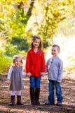 3 молодых отпрыска Стоковые Изображения RF