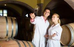 2 молодых работника дома вина проверяя качество продукта Стоковые Изображения