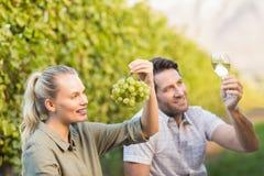 2 молодых счастливых виноторговца держа бокал вина и виноградины Стоковое Изображение RF