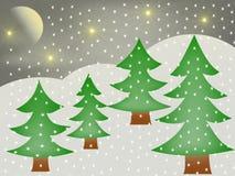Молчаливая ноча в зиме Стоковая Фотография RF