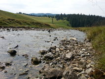 Молчаливое река в Padis, Румынии Стоковые Изображения