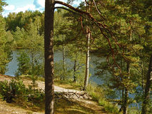 Молчаливое река осени Стоковое фото RF