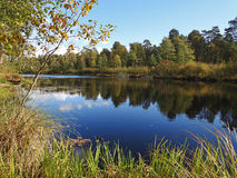 Молчаливое река осени Стоковая Фотография RF