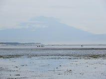 Молчаливый пляж с облаками Стоковое Фото