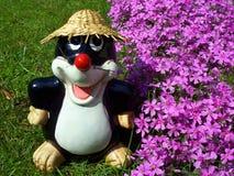 моль сада Стоковое Фото