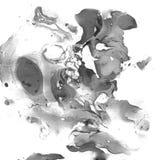 Мраморизованная черно-белая абстрактная предпосылка Жидкостное мраморное Illistration Стоковые Фото