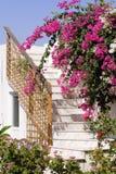 мраморная лестница Стоковое Изображение