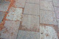 Мраморные плиты на пешеходной дорожке с сухими листьями и небольшими твердыми частицами стоковая фотография rf