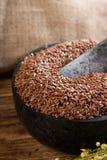 Мраморный миномет вполне коричневых семян потока Стоковое фото RF