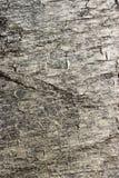 мрамор с серыми штриховатостями Стоковое Фото