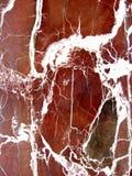 мрамор Стоковая Фотография