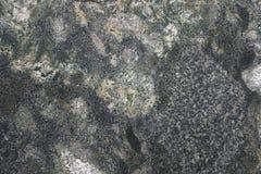 Мрамор стоковые фото