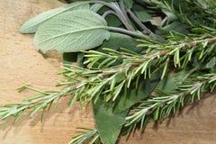 Мудрые листья, розмариновое масло Стоковое Фото