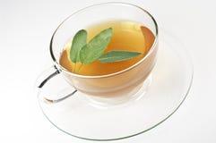 мудрый чай Стоковое Фото