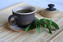 мудрый чай Стоковые Фотографии RF