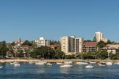 Мужественный залив дерева капусты и пляж, Сидней Австралия Стоковая Фотография RF