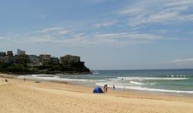 Мужественный пляж Стоковые Изображения RF