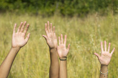 Мужская и женская рука поднялась высоко в поле Стоковое Фото