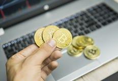 Мужская рука бизнесмена держа bitcoin дерева на предпосылке клавиатуры компьтер-книжки и куче золотых монеток деньги фактически стоковые изображения