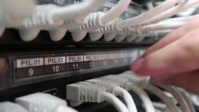 Мужская рука вводит кабель даты в маршрутизатор интернета, конец-вверх Индикация деятельности  видеоматериал