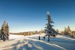 Мужские альпинисты идя на ледник Альпинисты на sno Стоковые Фото