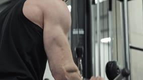 Мужские мышцы трицепса оружий тренировки используя машину кабеля для массы тела видеоматериал