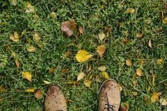 Мужские ноги в кожаных ботинках на предпосылке листьев зеленой травы и желтого цвета Стоковые Изображения RF