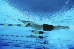 Мужские пловцы участвуя в гонке в бассейне стоковые изображения rf