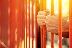 Мужские руки за барами двора тюрьмы Стоковое фото RF