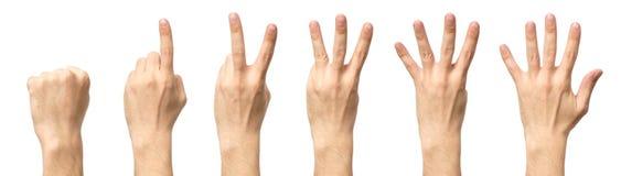 Мужские руки подсчитывая от изолированные нул к 5 Стоковая Фотография RF