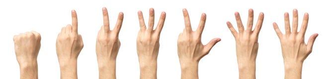 Мужские руки подсчитывая от изолированные нул к 5 Стоковые Фото